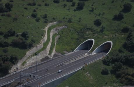 Nili tunnels