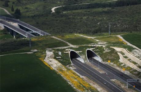 Dalia tunnel